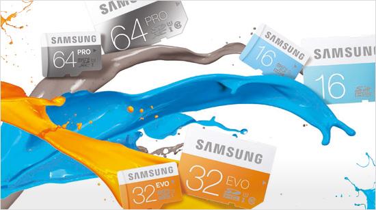 Samsung SD-Karte Pro (64 GB) & Samsung microSD-Karte Evo (32 GB)